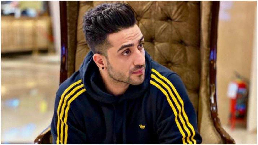 Bigg Boss 14: Aly Goni lends his support to Rahul Vaidya in captaincy