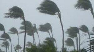 Cyclone Nivar claims eight lives in AP
