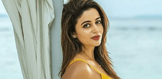 Bhabhiji Ghar Par Hain fame Nehha Pendse hits back at trolls in style!; read on