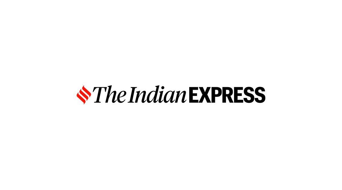 Wardha district, women empowerment, Wardha backward communities, green energy, indian express news