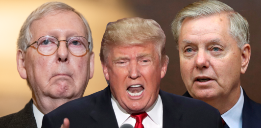 Graham defends McConnell following Trump's scathing statement: 'Indispensable to Trump's success'