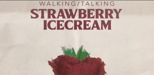 Vignesh Shivan's next production Walking Talking Strawberry Icecream to be directed by debutant Vinayak V